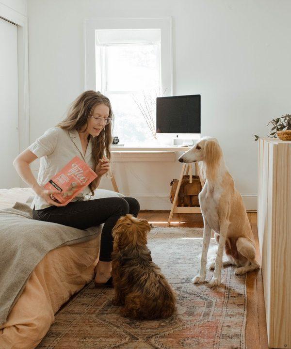 chiens et leur maitresse