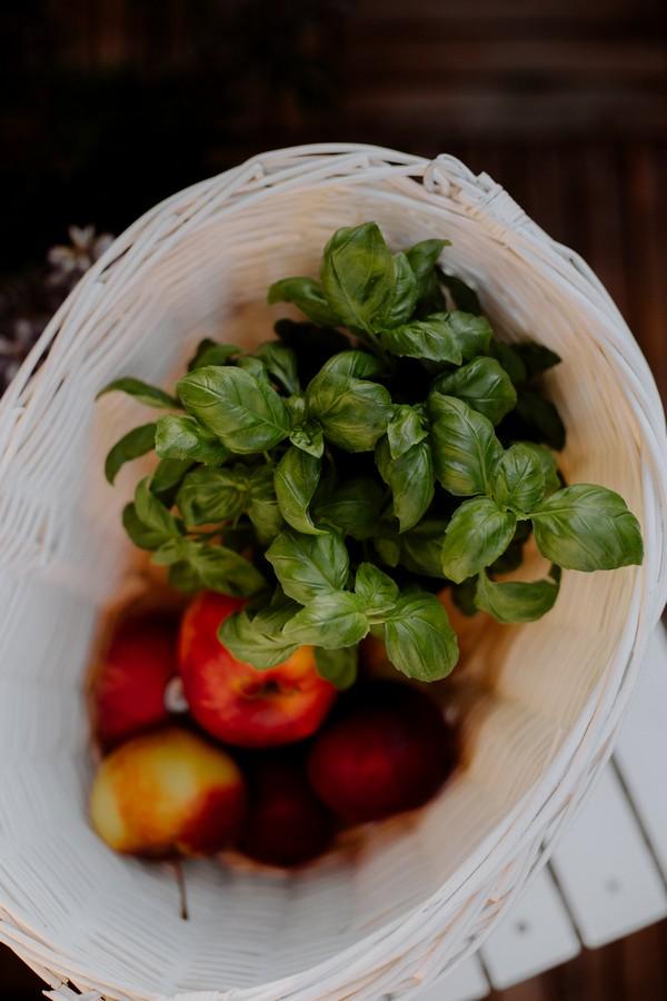 basilic frais dans une panière avec des tomates
